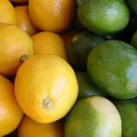 Lemonlimegal