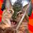 Treelzebub's avatar
