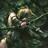 Łowczyni Artemidy's avatar