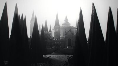 QUIZ: Discover Your Ilvermorny House