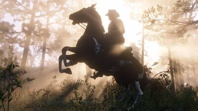 'Red Dead Redemption 2' Horses: How Grooming Leads to Zooming