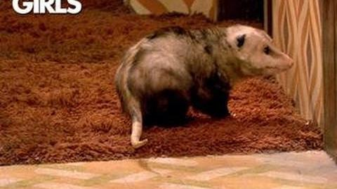 2 Broke Girls - Pulling Out The Possum