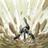 TG90's avatar