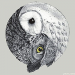 Owlofthewinterandsky's avatar