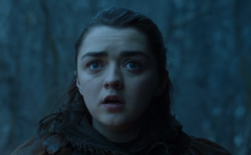 Arya Stark and Nymeria Reunited on 'Game of Thrones' and It Did NOT Feel So Good