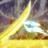 CampioneofAbridged's avatar