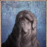 PlantTinker's avatar