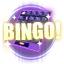 Item Bingo Card