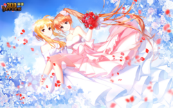 Wedding Dress Fate