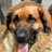 Thilis's avatar