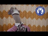 31 minutos - Saludo de Tulio al Vive Latino 2020