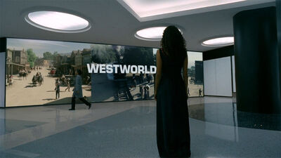 5 More Attractions We'd Like to See in 'Westworld'