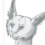Coleon's avatar