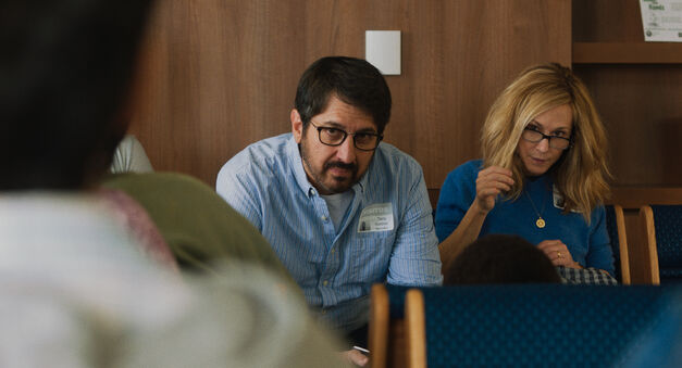 big sick ray romano holly hunter