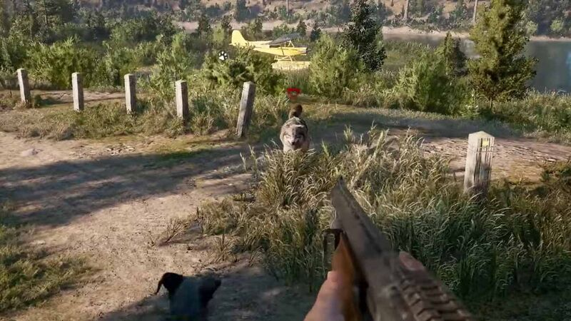Far Cry 5 wolf coyote
