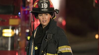 Why 'Grey's Anatomy' Fans Will Love 'Station 19'