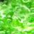 ZielonyBulgot's avatar