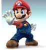 Mario bro 1234