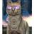 Randomise's avatar