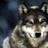 Ajr337's avatar