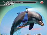 Card 442: Spy Dolphin