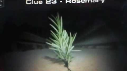 The 39 Clues Clue 23