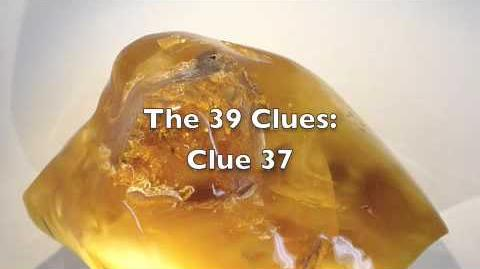 The 39 Clues Clue 37
