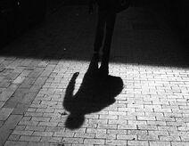 ShadowMadrigal