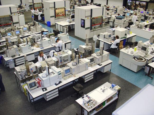 Bermuda Lab