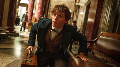 Rowling Reveals More 'Fantastic Beasts' Films at Global Fan Event