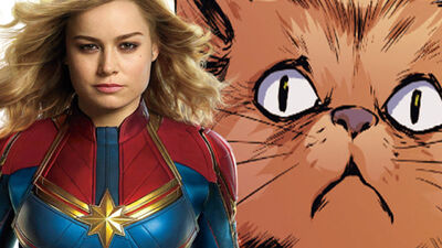 Everyone Needs to Get Excited About Captain Marvel's Cat