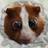Sinistersister's avatar