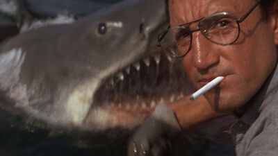 'Jaws' Throughout the Years: Amity Island to the Bahamas