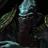 Vergel Nikolai's avatar