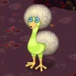 Dandidoo the Green Bird