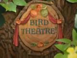Bird Theatre!