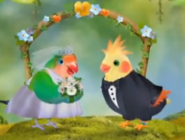 3rd & Bird Samuel and Rudy
