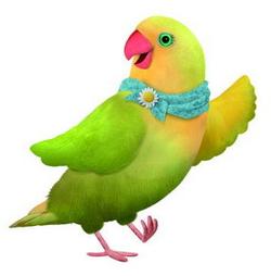 3rd & Bird Mrs. Lovebird