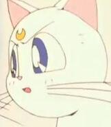 Artemis (TV Series)