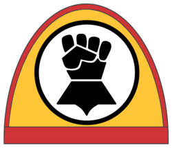 Imperial fists shoulder