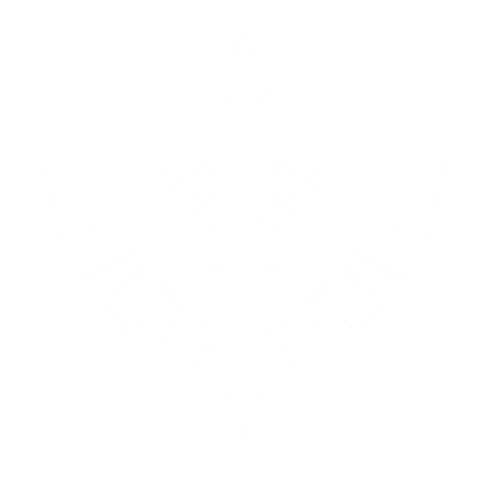 File:Dark angels icon.png
