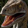 Velociraptor145