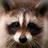Zoomer364's avatar