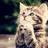 Kitty Kat24 :)'s avatar