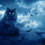 Морская Звездочка's avatar