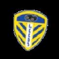 Leeds logo!