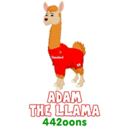 Adam the Llama old