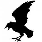 CrowArt's avatar
