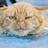 Loupy5919's avatar