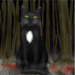 Whitestar707's avatar